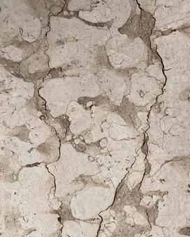 乾燥的土壤開裂的質地