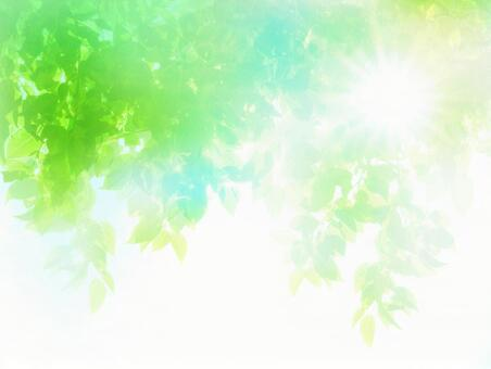 Abstract background of summer sun and fresh green sunbeams image