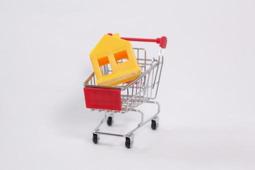 Shopping cart 20
