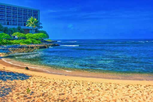 Turtle Beach (Oahu)