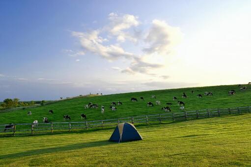목장 캠프장