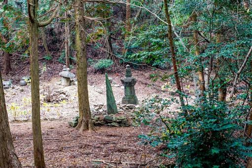 科拉山上主墓的風景