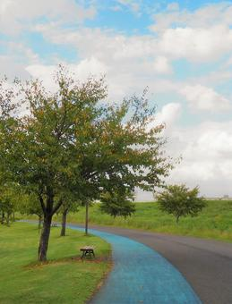 Autumn Sky Running Course-Shin-Yokohama Park-