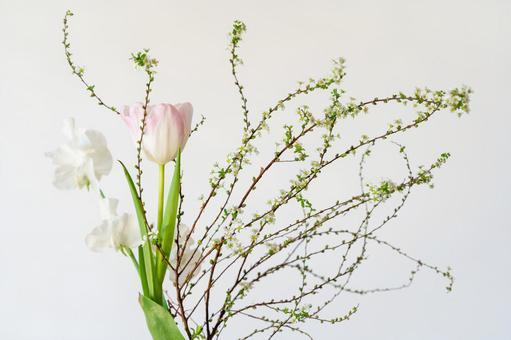 Desktop flowers