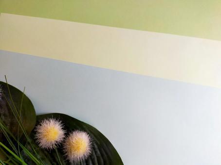 옅은 3 색 잎과 둥근 크림 2 개의 배경, 텍스처