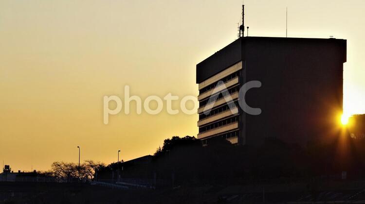 ビルに昇る朝日(八王子市役所)の写真