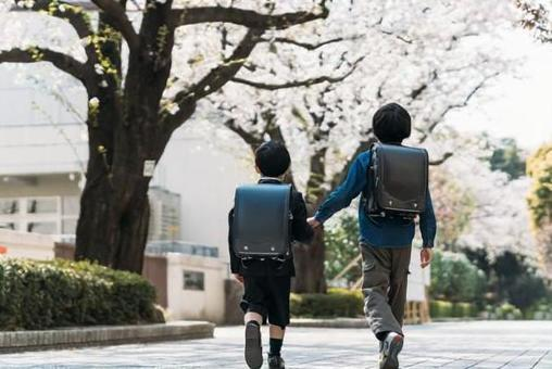 Elementary school upper grades and elementary school first graders holding hands under the cherry tree