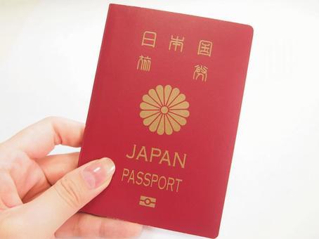 여권을 든 손