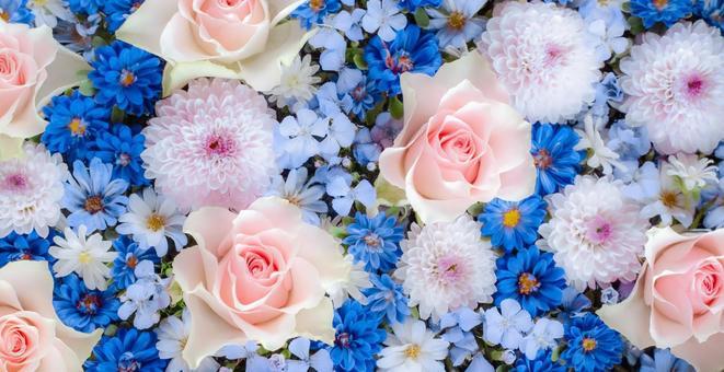 Roses, mum, dianthus. Arrangement of pink and blue flowers