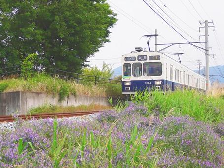 Summer local line trip