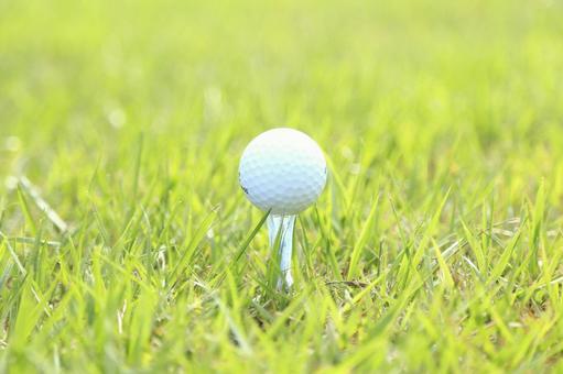 Grass and golf ball 2