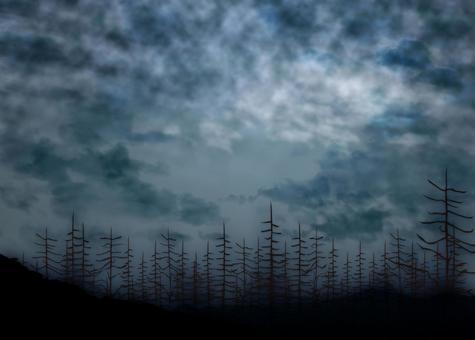 어두운 숲