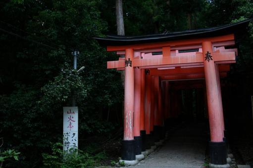 Horror torii