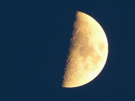 Half moon (aged 7.6)