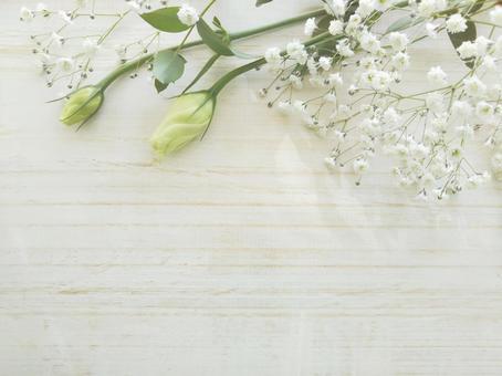흰 꽃의 프레임 나뭇결 배경