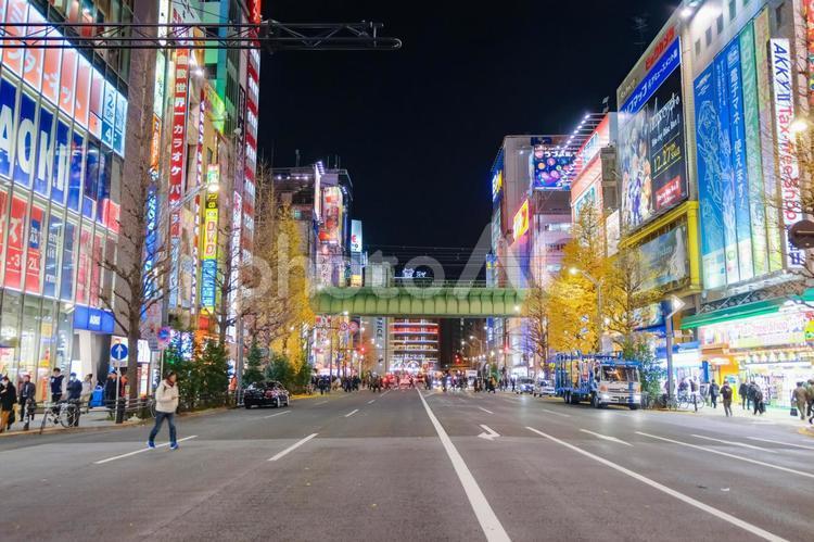 夜の秋葉原 中央通りの写真