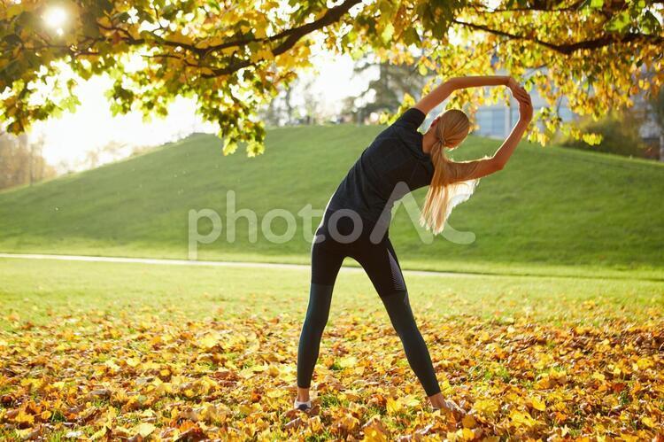 夕方の公園でストレッチをする女性1の写真