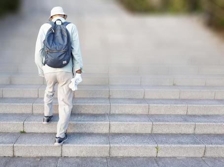 Rear view of an elderly man climbing a long staircase