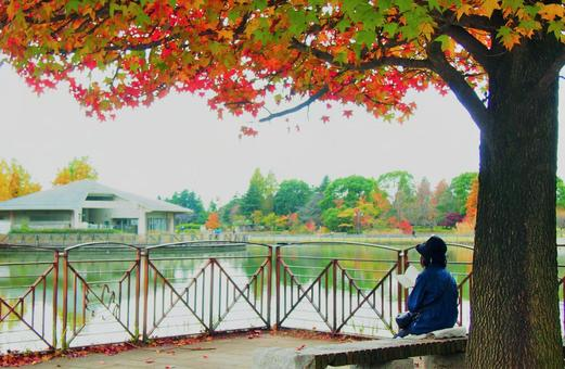 A woman enjoying reading in the park on an autumn day