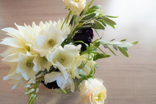 [Interior flower] Interior flower a