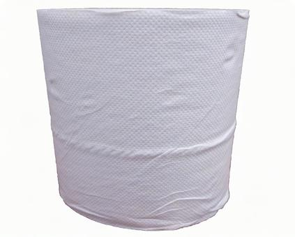 Toilet paper (with PSD)