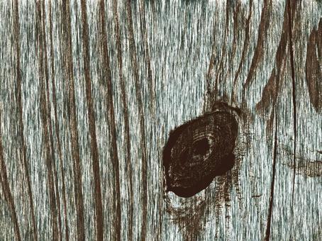Texture of tree 48
