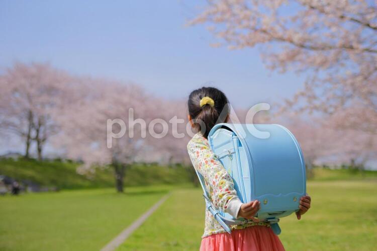 ランドセルを担いだ女の子の写真