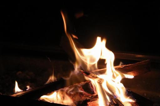 캠프 불꽃