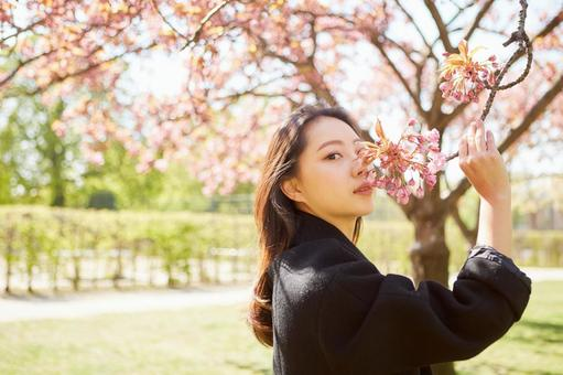 Asian woman under the cherry tree 1
