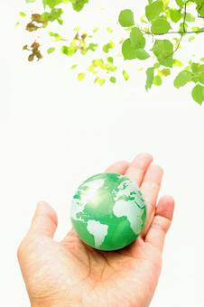 1手与地球
