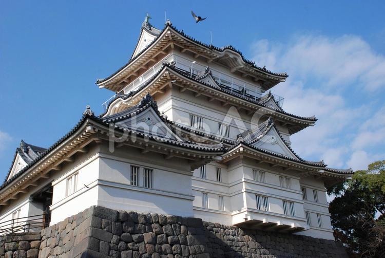 小田原城の写真