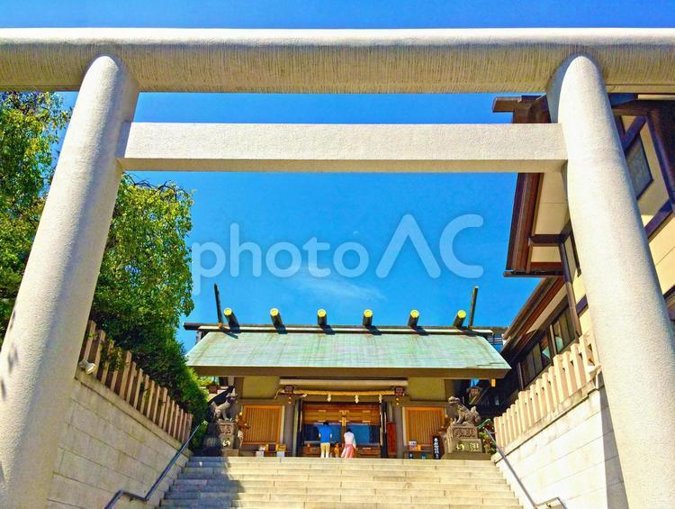 大鳥居で初詣の写真