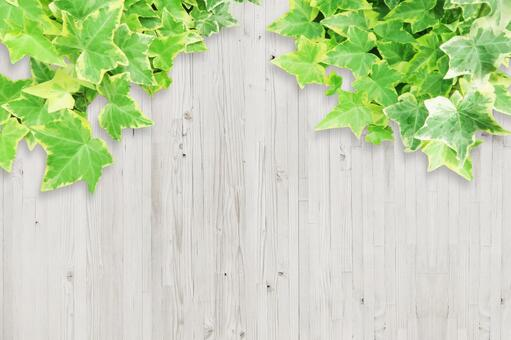 White wood texture and plant background horizontal position material