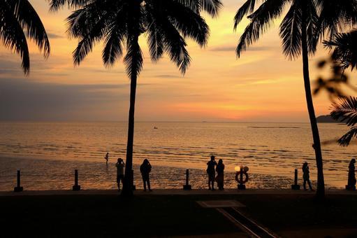 Beach resort 286