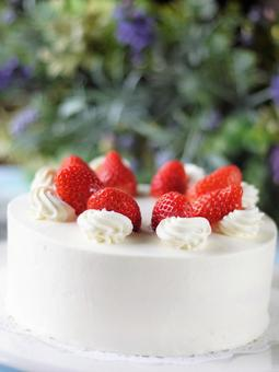 Short cake 2
