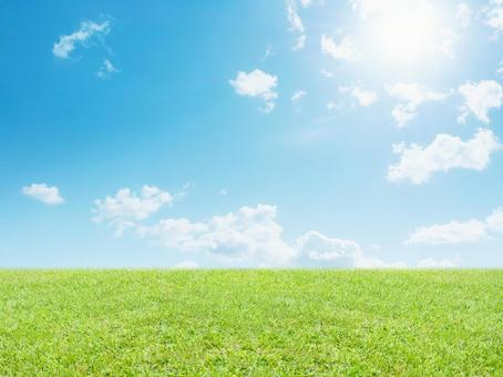 Refreshing sunny landscape 2