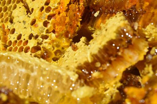 Nest honey just after being taken out of the beehive Gourmet Immunity Close-up Material Background