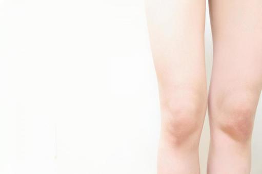 Model legs