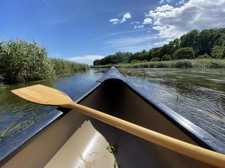 美々川에서 카누