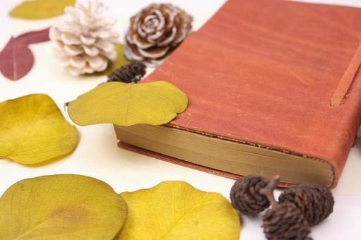 수첩과 낙엽 6
