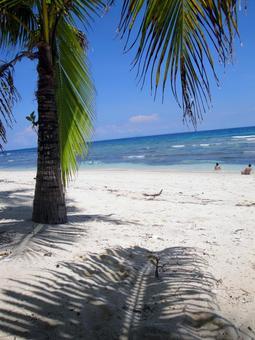 필리핀 해변과 그늘
