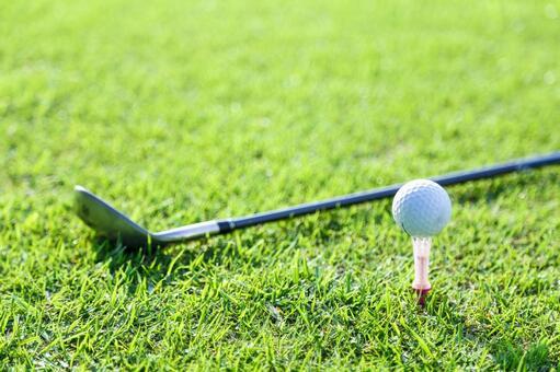 Grass club and golf ball 19