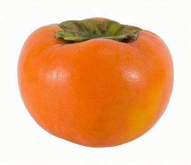 Persimmon (clipping)