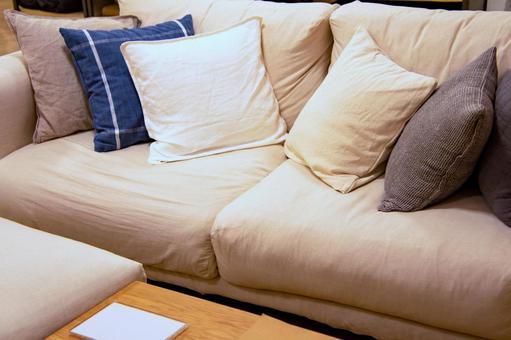Stylish interior sofa and cushions