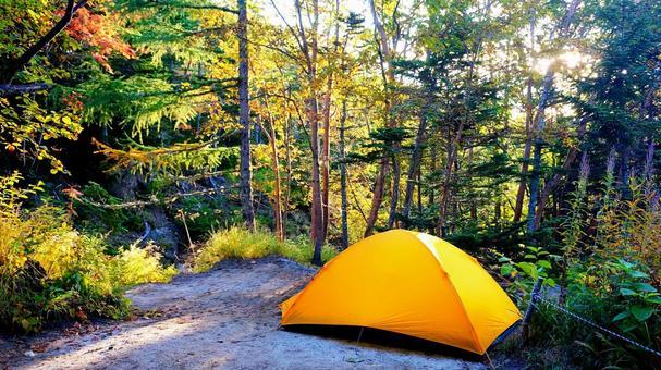 鳳凰山莊帳篷區的黃色帳篷2