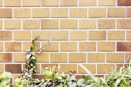 Brick wall 51