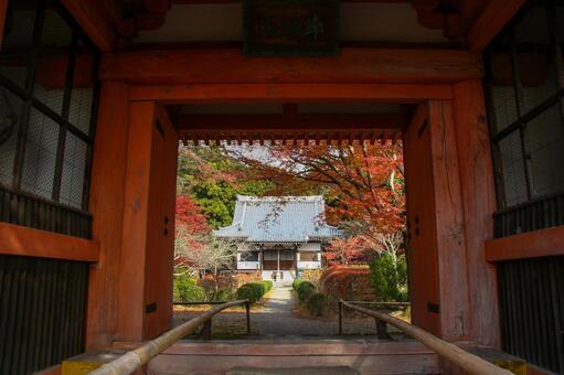 寺廟的紅門和區域上都綴著秋天的落葉