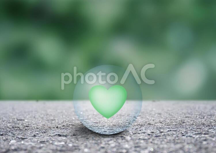緑のハートの写真