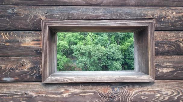 Waterfowl window
