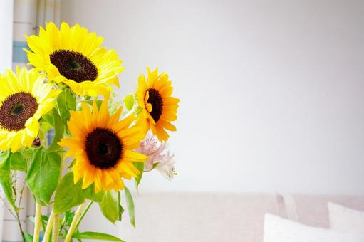 有向日葵的夏日房間的形象